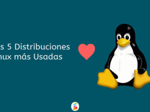 Las 5 Distribuciones Linux más Usadas