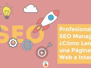 Profesionales SEO Manager. ¿Cómo Lanzar una Página Web a Internet?