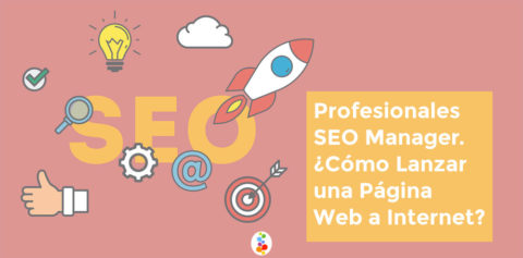 Profesionales SEO Manager. ¿Cómo Lanzar una Página Web a Internet? Openinnova