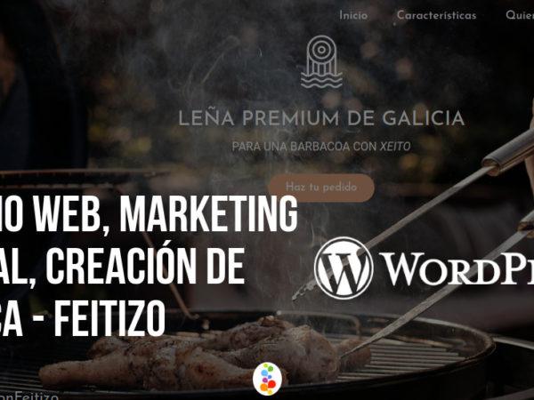 Diseño Web, Marketing Digital, Creación de Marca – Feitizo