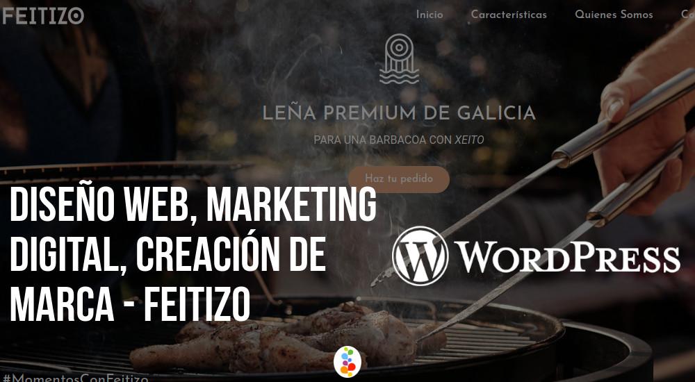 Diseño Web, Marketing Digital, Creación de Marca - Feitizo Openinnova